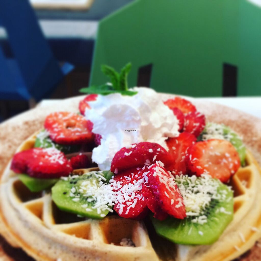 "Photo of Picnic  by <a href=""/members/profile/AbiM"">AbiM</a> <br/>Waffles yum <br/> March 26, 2018  - <a href='/contact/abuse/image/83322/376254'>Report</a>"