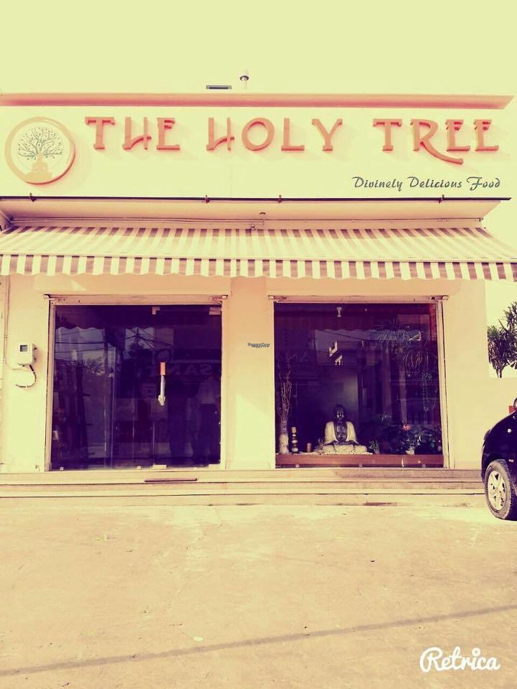 "Photo of The Holy Tree  by <a href=""/members/profile/community5"">community5</a> <br/>The Holy Tree <br/> March 13, 2017  - <a href='/contact/abuse/image/83329/235883'>Report</a>"