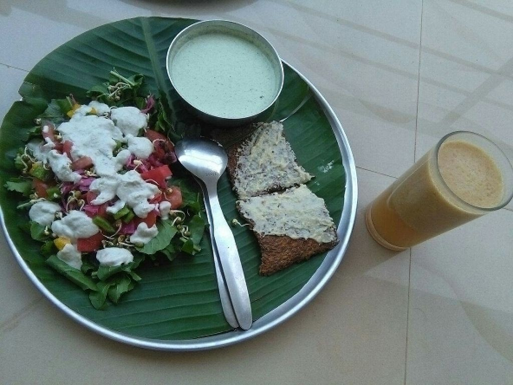 "Photo of Auroville Raw Food Centre  by <a href=""/members/profile/HappyVeganCam"">HappyVeganCam</a> <br/>raw cucumber soup, delicious salad with fermented vegetables and sesame butter crackers + amla juice! <br/> December 29, 2016  - <a href='/contact/abuse/image/83330/205941'>Report</a>"