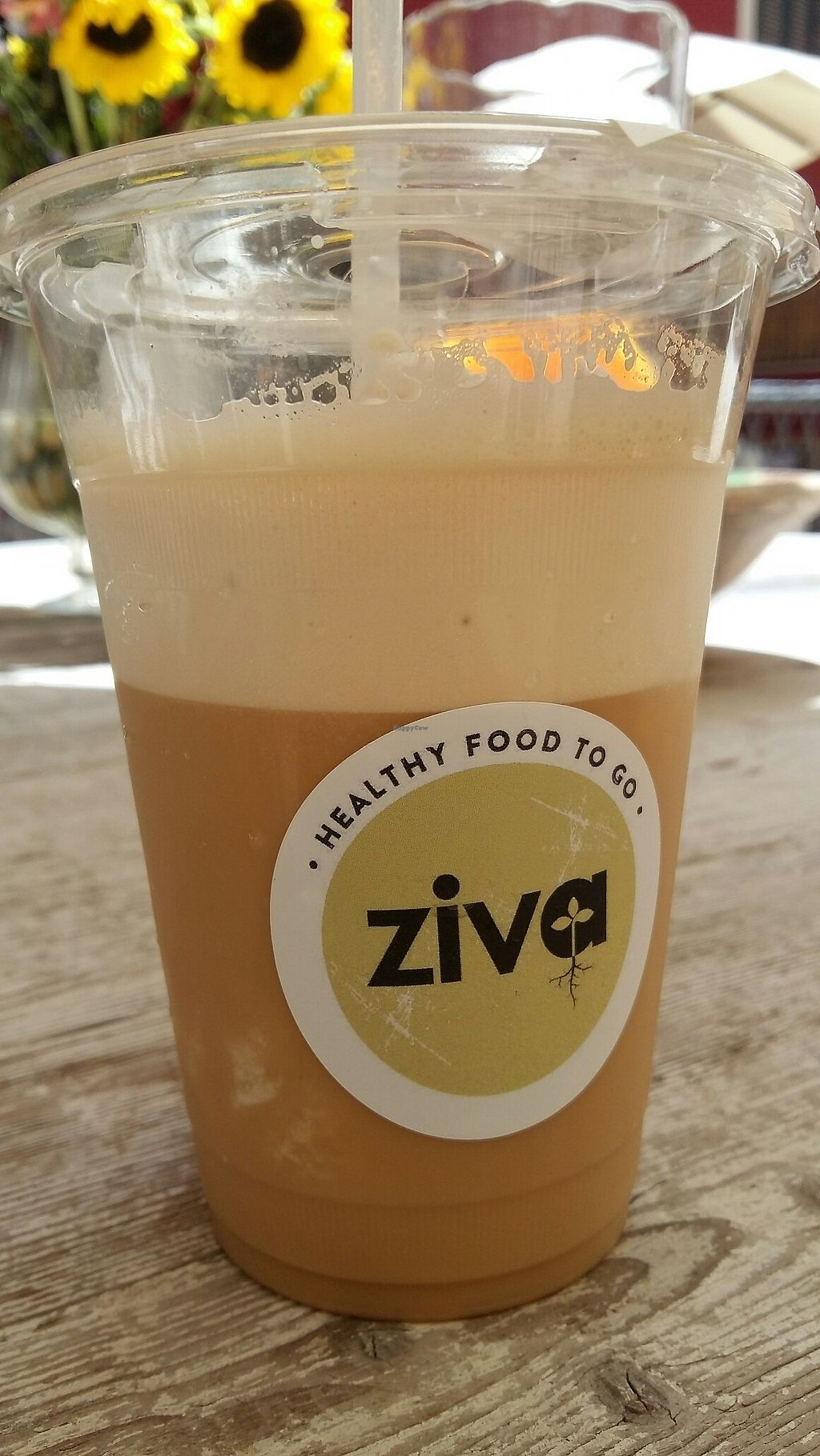 "Photo of Ziva To Go - Center  by <a href=""/members/profile/daisybell"">daisybell</a> <br/>iced coffee  <br/> July 28, 2017  - <a href='/contact/abuse/image/83384/285906'>Report</a>"