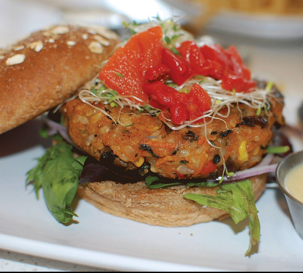 """Photo of The Counter  by <a href=""""/members/profile/Amytara214"""">Amytara214</a> <br/>Housemade Veggie Patty! <br/> April 16, 2017  - <a href='/contact/abuse/image/83412/249139'>Report</a>"""