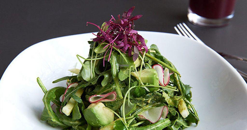 "Photo of Divya's Kitchen  by <a href=""/members/profile/kerickson4491"">kerickson4491</a> <br/>Jicama Avocado Salad <br/> April 4, 2017  - <a href='/contact/abuse/image/83468/244646'>Report</a>"