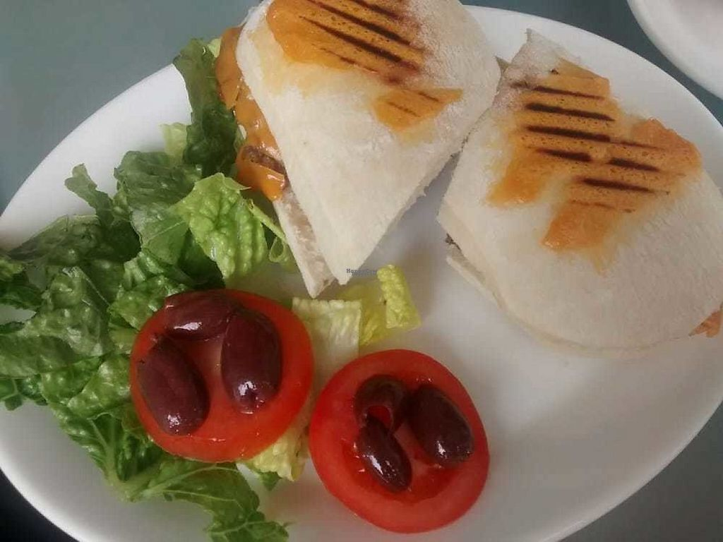 """Photo of Musicker  by <a href=""""/members/profile/TrixieFirecracker"""">TrixieFirecracker</a> <br/>Cheeze and veggie haggis panini <br/> December 31, 2016  - <a href='/contact/abuse/image/83500/206624'>Report</a>"""