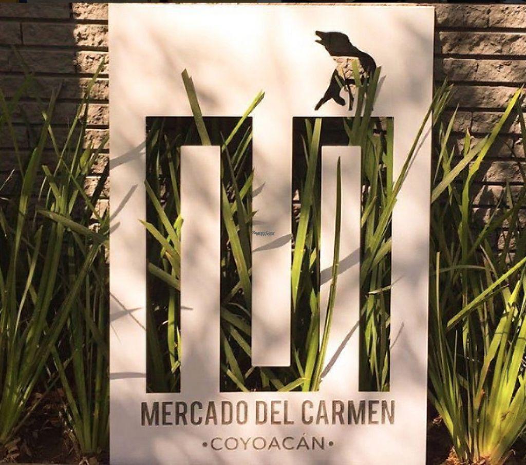 "Photo of Aura Vegana  by <a href=""/members/profile/DanielaAguilarL%C3%B2pez"">DanielaAguilarLòpez</a> <br/>Mercado del Carmen Coyoacán, México City <br/> December 7, 2016  - <a href='/contact/abuse/image/83523/197971'>Report</a>"
