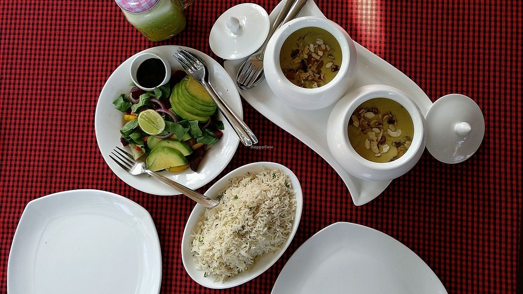 "Photo of Avocado Garden Restaurant and Bar  by <a href=""/members/profile/tavvara"">tavvara</a> <br/>Malai Kofta, Jeera Rice, Green Salad & Green Juice <br/> November 12, 2017  - <a href='/contact/abuse/image/83539/324795'>Report</a>"