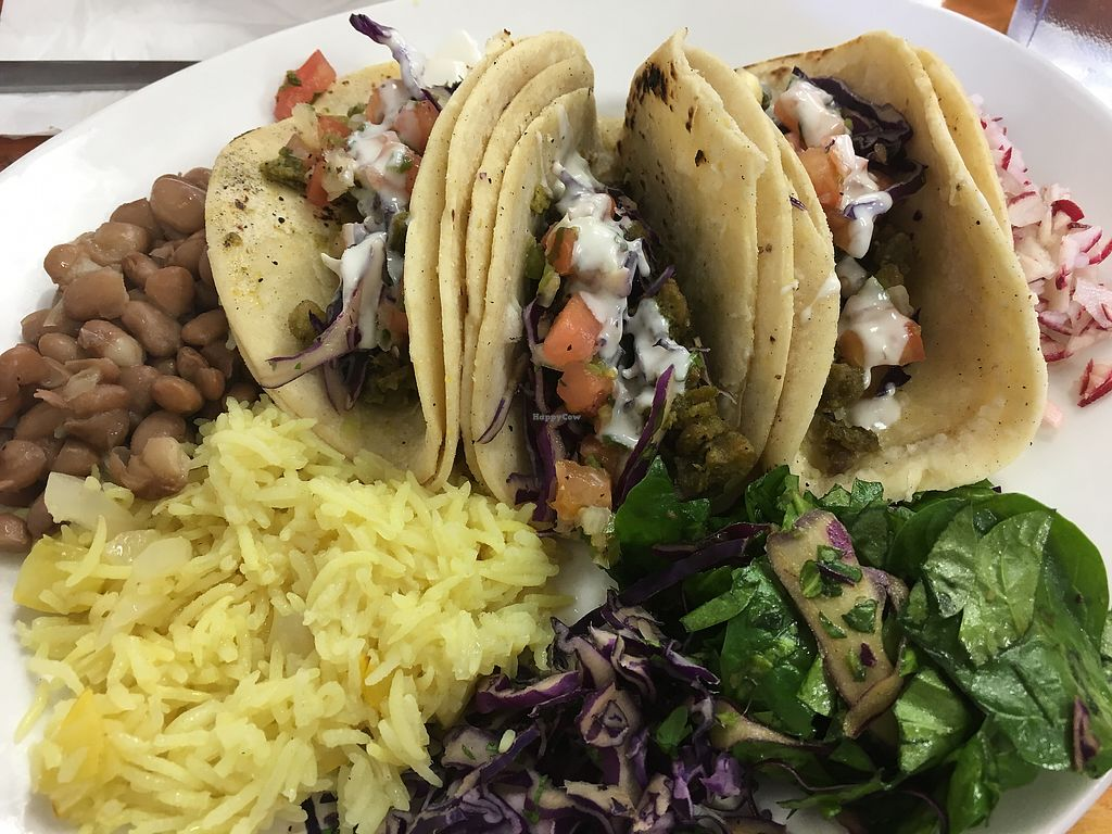 "Photo of Tumerico  by <a href=""/members/profile/Dr.G"">Dr.G</a> <br/>Chicharon Tacos  <br/> November 22, 2017  - <a href='/contact/abuse/image/83572/328169'>Report</a>"