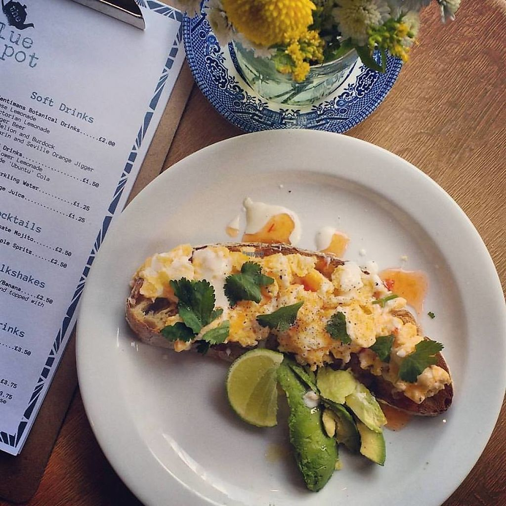 "Photo of The Blue Teapot  by <a href=""/members/profile/KirstieF"">KirstieF</a> <br/>Aussie Brunch - Eggs and Avocado on Toast <br/> December 5, 2016  - <a href='/contact/abuse/image/83600/197728'>Report</a>"