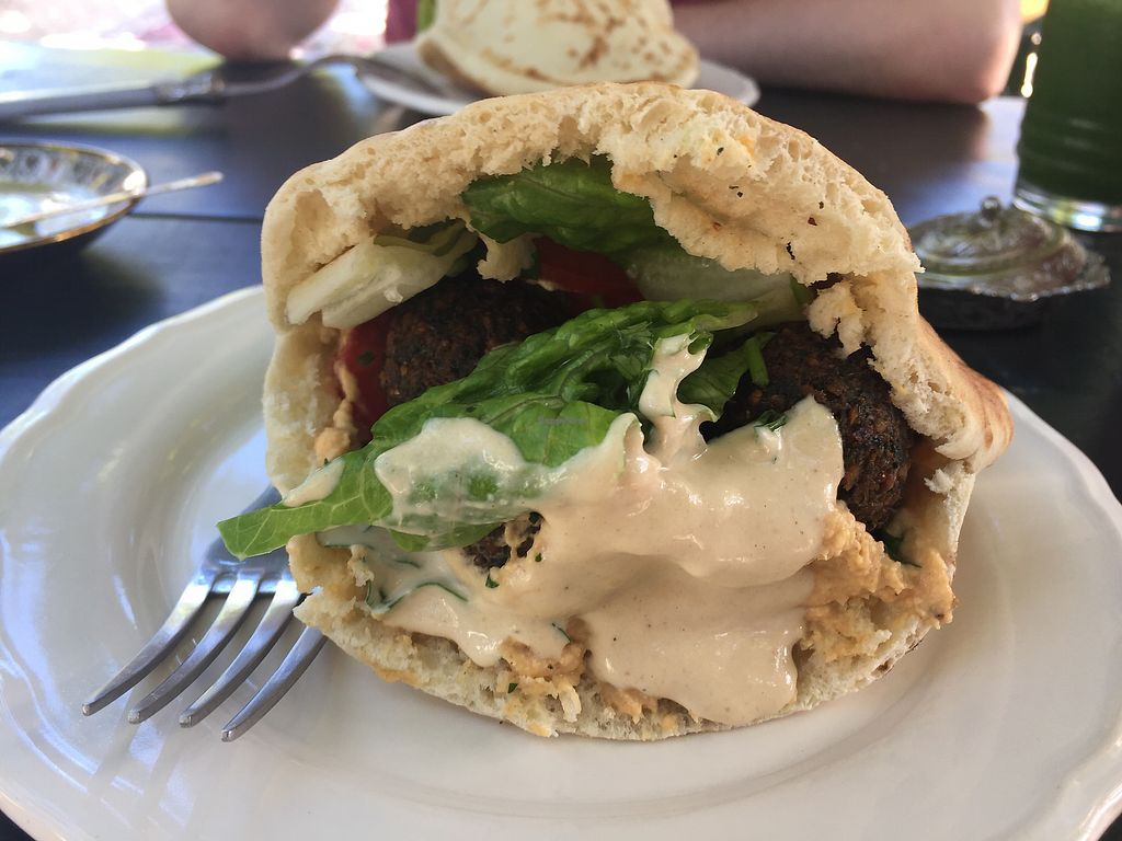 """Photo of Pasha Turkish & Arabic Cuisine  by <a href=""""/members/profile/SinzianaK"""">SinzianaK</a> <br/>Falafel sandwiched  <br/> December 14, 2017  - <a href='/contact/abuse/image/83688/335511'>Report</a>"""