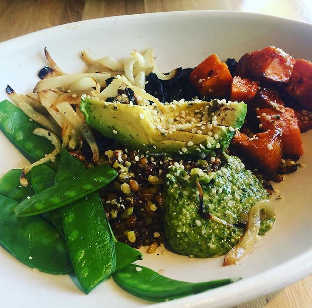 """Photo of True Food Kitchen  by <a href=""""/members/profile/VeganCookieLover"""">VeganCookieLover</a> <br/>Ancient grains bowl  <br/> May 29, 2017  - <a href='/contact/abuse/image/83755/263680'>Report</a>"""