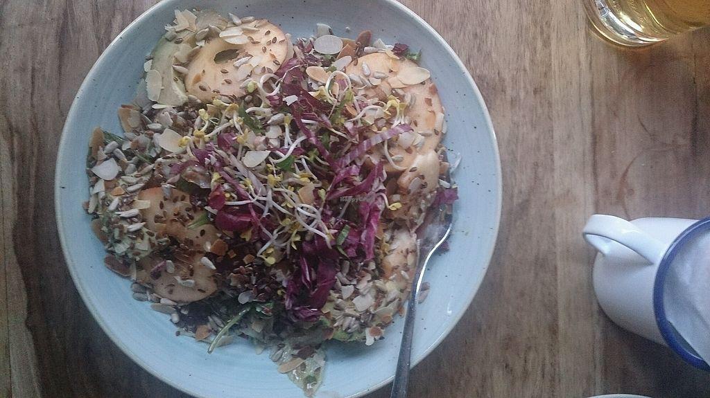 "Photo of Ki-Nova  by <a href=""/members/profile/sophiaalina"">sophiaalina</a> <br/>vegan salad <br/> September 5, 2017  - <a href='/contact/abuse/image/83757/301239'>Report</a>"