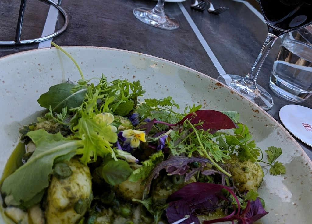"""Photo of Cafe Sydney  by <a href=""""/members/profile/Toroco"""">Toroco</a> <br/>Gnocchi  <br/> February 28, 2018  - <a href='/contact/abuse/image/83779/365035'>Report</a>"""