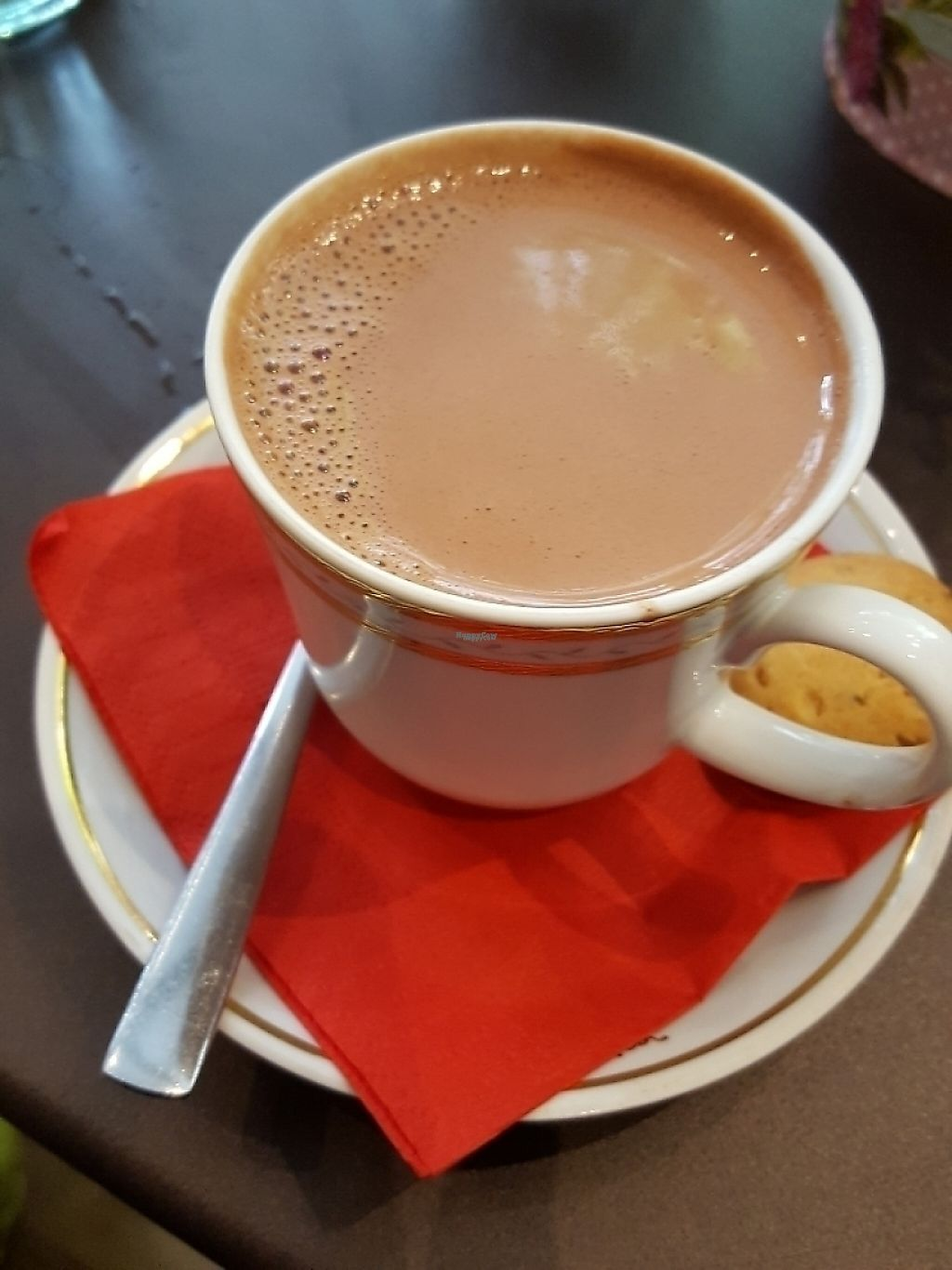 "Photo of Melikrini  by <a href=""/members/profile/sophiefp"">sophiefp</a> <br/>vegan hot chocolate with baby cookie <br/> April 7, 2017  - <a href='/contact/abuse/image/83792/262273'>Report</a>"