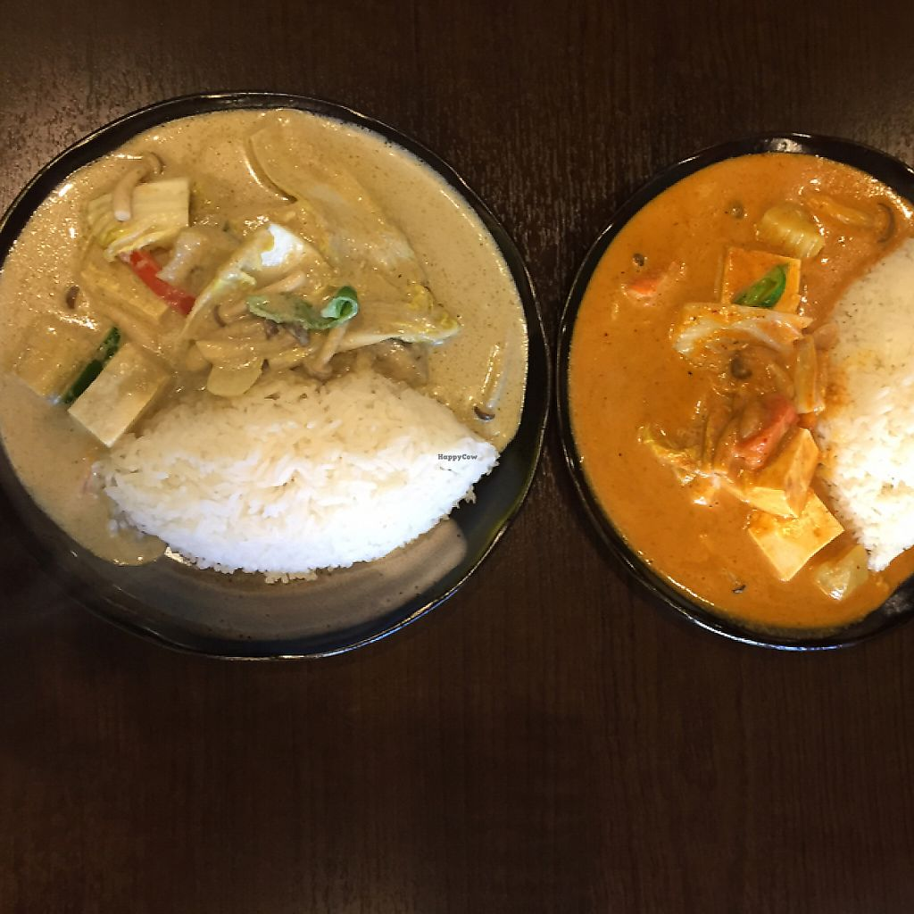 """Photo of Rod Dee  by <a href=""""/members/profile/StarKodama"""">StarKodama</a> <br/>Masuman curry and green curry with tofu  <br/> December 17, 2016  - <a href='/contact/abuse/image/83799/284547'>Report</a>"""
