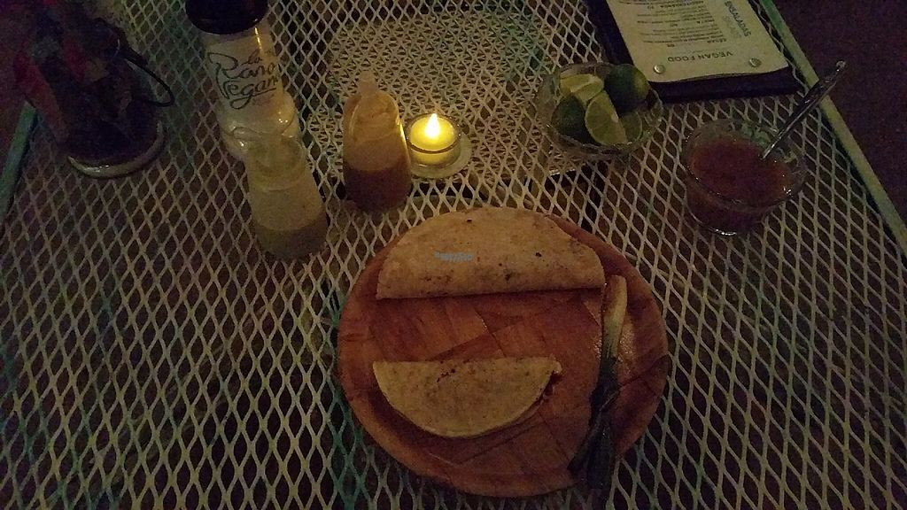 """Photo of La Rana Vegana  by <a href=""""/members/profile/zroq12"""">zroq12</a> <br/>Taco and quesedilla, with almond cheese <br/> December 10, 2016  - <a href='/contact/abuse/image/83802/198853'>Report</a>"""
