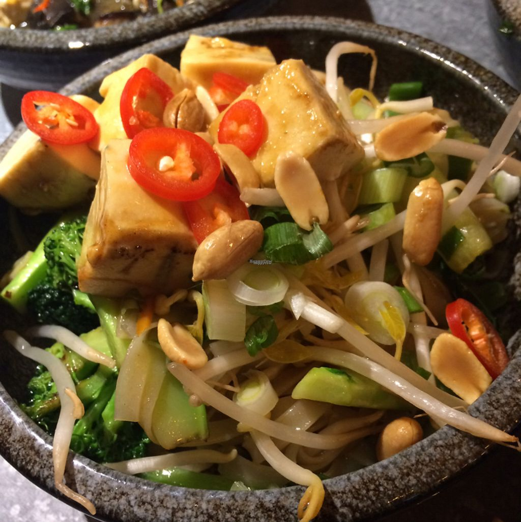 """Photo of Yugo  by <a href=""""/members/profile/CiaraSlevin"""">CiaraSlevin</a> <br/>Tofu Pad Thai <br/> December 12, 2016  - <a href='/contact/abuse/image/83831/200482'>Report</a>"""