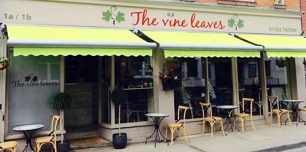 "Photo of The Vine Leaves  by <a href=""/members/profile/community"">community</a> <br/>The Vine Leaves <br/> December 11, 2016  - <a href='/contact/abuse/image/83885/199924'>Report</a>"