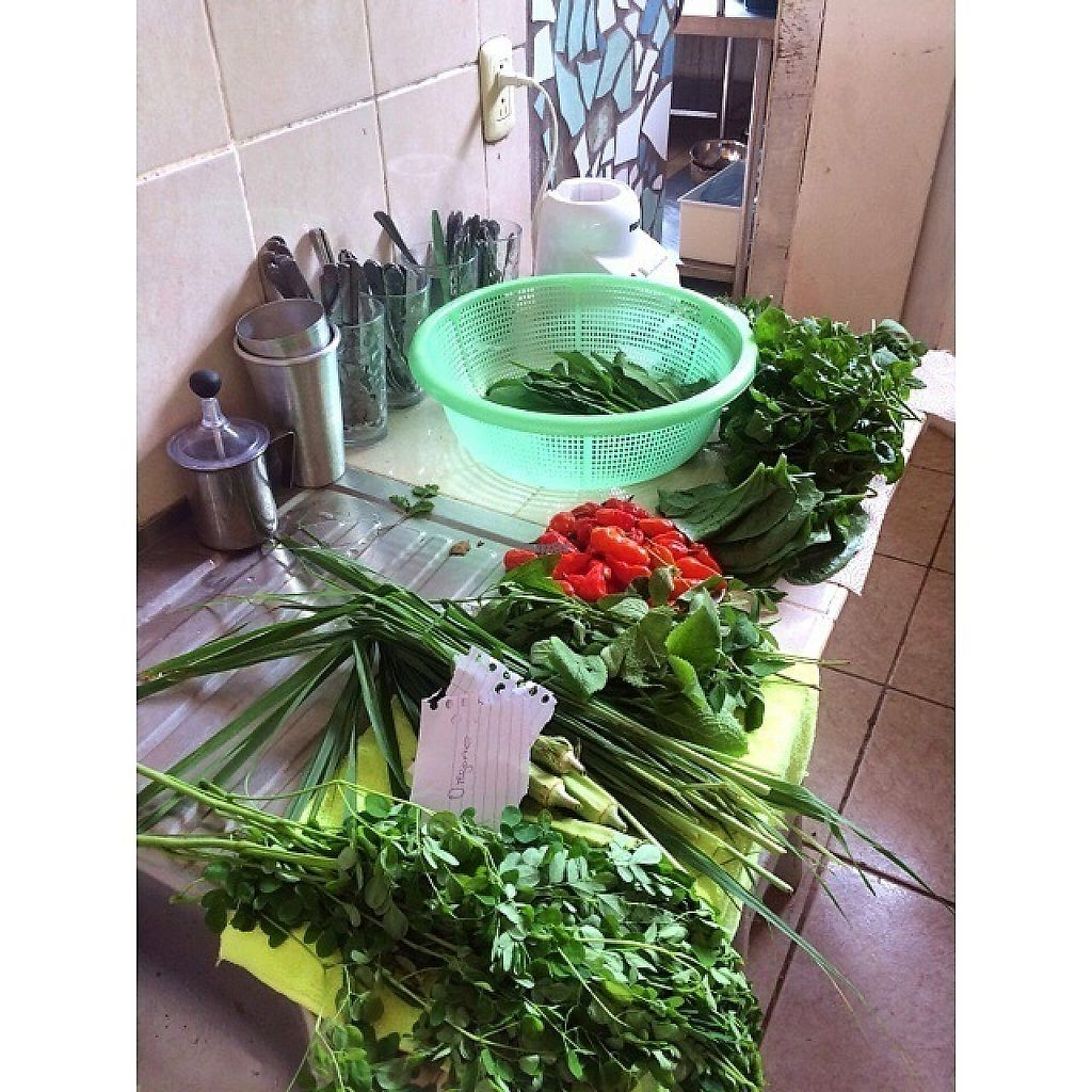 "Photo of Afropolitan Cafe  by <a href=""/members/profile/sydneyhumble"">sydneyhumble</a> <br/>Gathered vegetables <br/> February 18, 2017  - <a href='/contact/abuse/image/84013/227796'>Report</a>"
