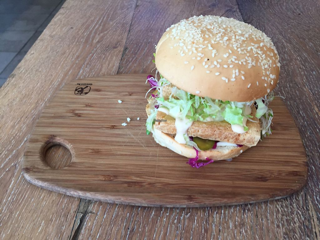 """Photo of Herbivore Eatery  by <a href=""""/members/profile/Wuji_Luiji"""">Wuji_Luiji</a> <br/>tofu burger <br/> February 14, 2017  - <a href='/contact/abuse/image/84024/226409'>Report</a>"""