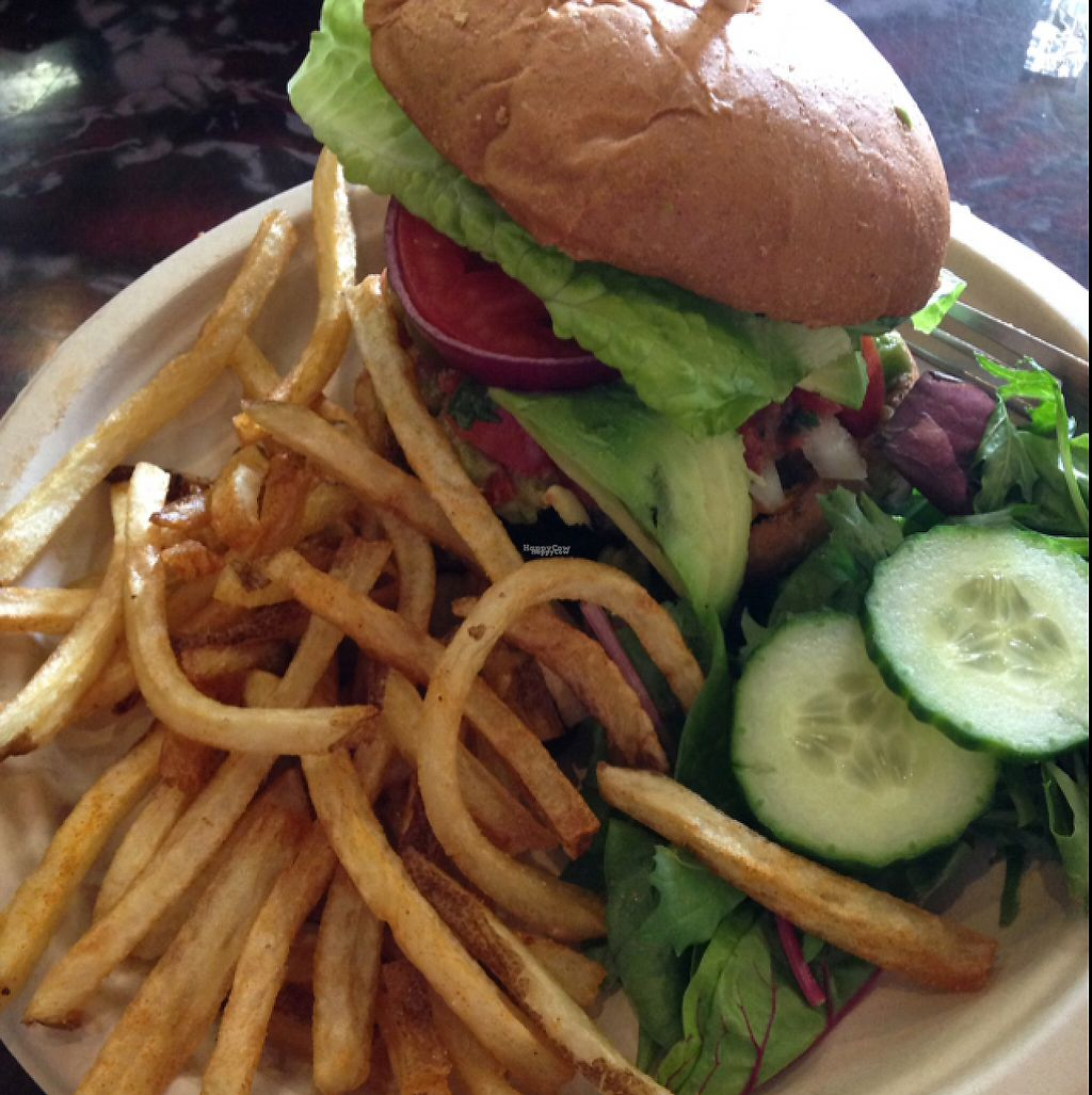 """Photo of Sanctuary Vegan Cafe  by <a href=""""/members/profile/Oscargogh"""">Oscargogh</a> <br/>southwestern burger  <br/> March 23, 2017  - <a href='/contact/abuse/image/84135/239893'>Report</a>"""