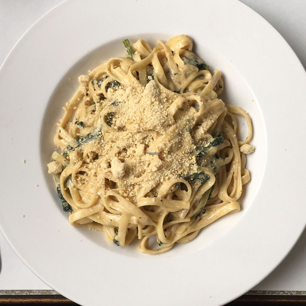 """Photo of Vegano  by <a href=""""/members/profile/KristenMary"""">KristenMary</a> <br/>Fettuccine  <br/> April 17, 2017  - <a href='/contact/abuse/image/84140/249338'>Report</a>"""
