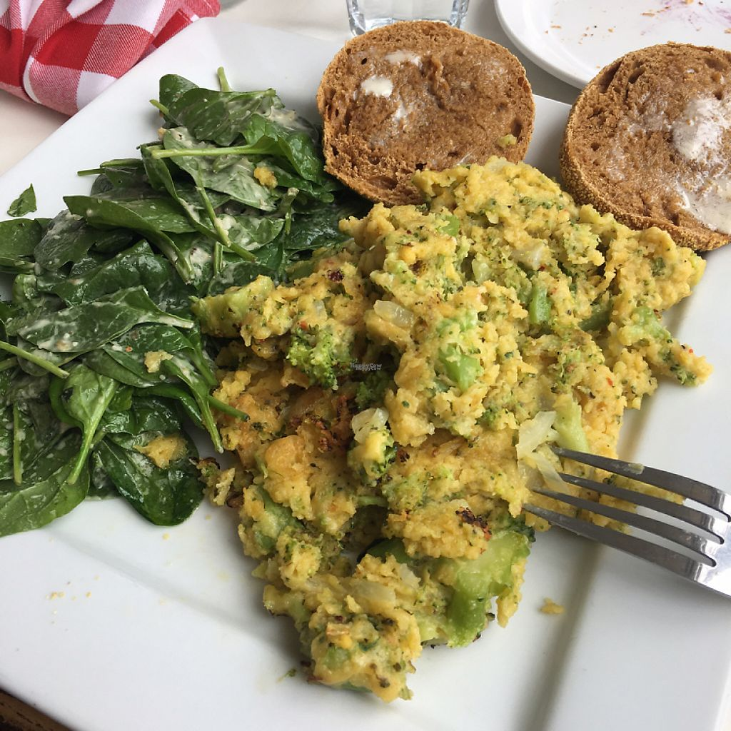 """Photo of Vegano  by <a href=""""/members/profile/COOLKOALA"""">COOLKOALA</a> <br/>brocoli omelette SO TASTE ?? <br/> April 28, 2017  - <a href='/contact/abuse/image/84140/253464'>Report</a>"""