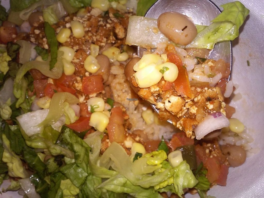 """Photo of Chipotle   by <a href=""""/members/profile/anastronomy"""">anastronomy</a> <br/>Tasty sofritas  <br/> February 11, 2017  - <a href='/contact/abuse/image/84240/225474'>Report</a>"""