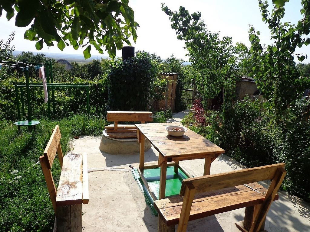 "Photo of CostelHostel  by <a href=""/members/profile/constantinfurtuna"">constantinfurtuna</a> <br/>Garden view at CostelHostel <br/> December 22, 2016  - <a href='/contact/abuse/image/84280/203958'>Report</a>"