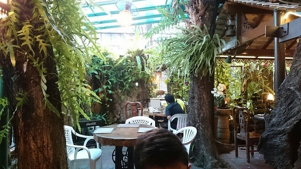 """Photo of Natural Restaurant  by <a href=""""/members/profile/Primrose"""">Primrose</a> <br/>Downstairs  <br/> February 18, 2017  - <a href='/contact/abuse/image/84315/227840'>Report</a>"""