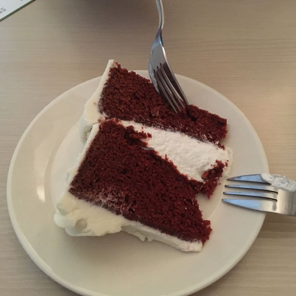"""Photo of Mooshka  by <a href=""""/members/profile/Fabivegan"""">Fabivegan</a> <br/>do not miss the red velvet cake  <br/> April 29, 2017  - <a href='/contact/abuse/image/84357/253862'>Report</a>"""