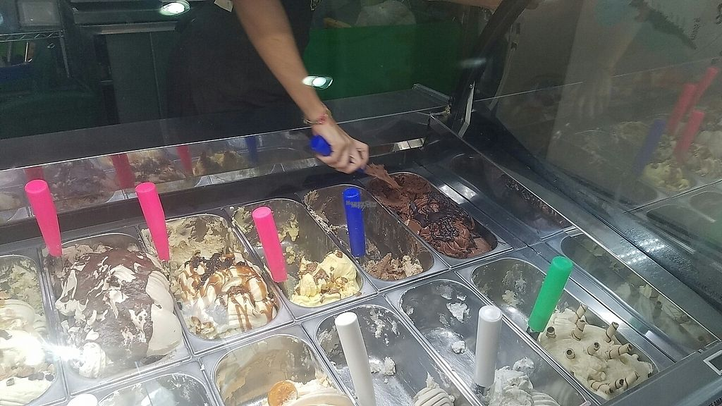 """Photo of Gelateria Tramonti  by <a href=""""/members/profile/kenvegan"""">kenvegan</a> <br/>gelato.. some vegan <br/> January 30, 2017  - <a href='/contact/abuse/image/84373/219637'>Report</a>"""