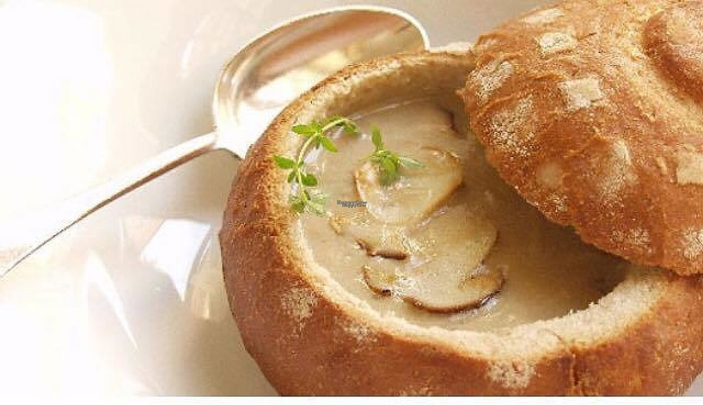 """Photo of Emilia's VitaminRausch  by <a href=""""/members/profile/community"""">community</a> <br/>mushroom soup  <br/> January 4, 2017  - <a href='/contact/abuse/image/84391/207960'>Report</a>"""