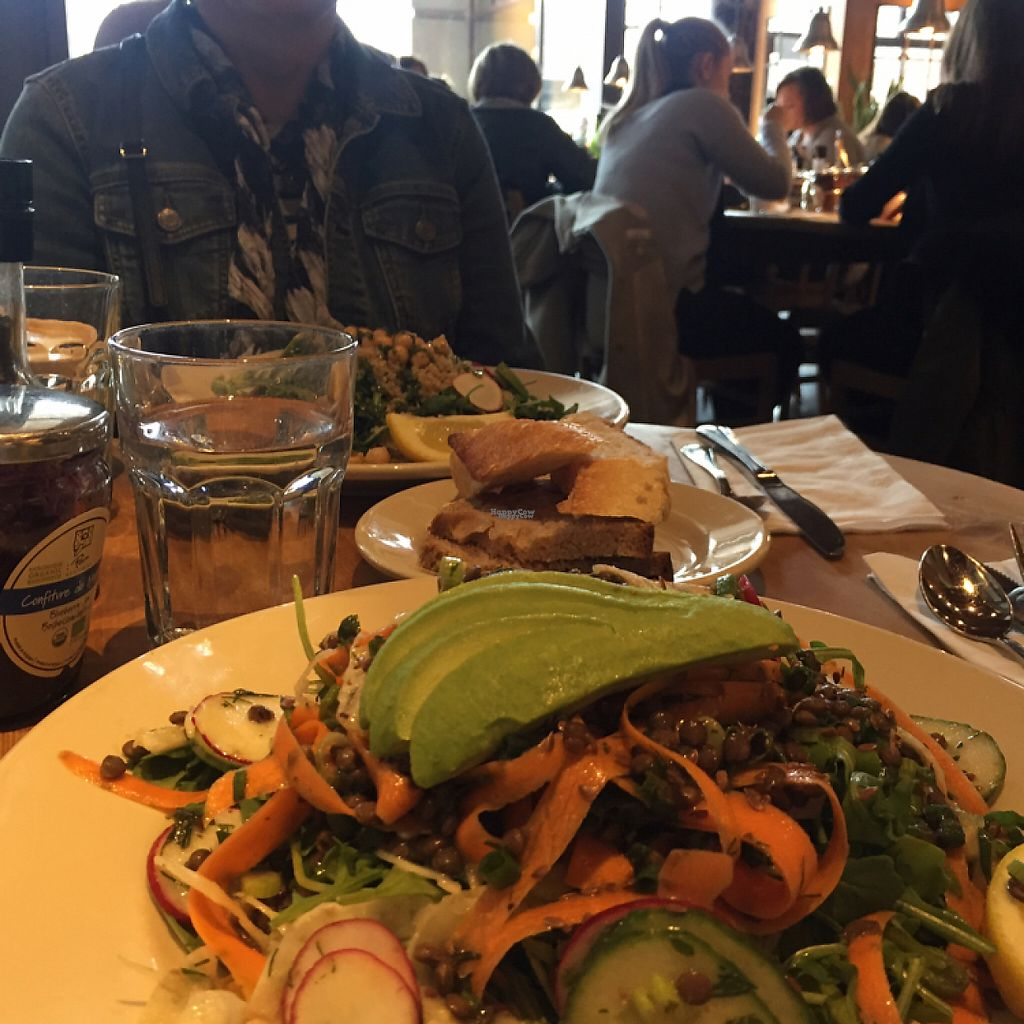 "Photo of Le Pain Quotidien - Michigan Ave  by <a href=""/members/profile/MaddyR"">MaddyR</a> <br/>lentil salad <br/> March 18, 2017  - <a href='/contact/abuse/image/84411/238147'>Report</a>"