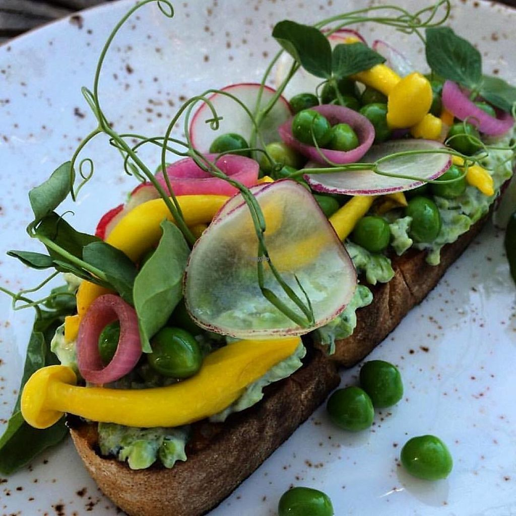 "Photo of Che a Chi  by <a href=""/members/profile/community"">community</a> <br/>Bread with minted peas, pickled turmeric, mushrooms and onions  <br/> January 26, 2017  - <a href='/contact/abuse/image/84463/216914'>Report</a>"