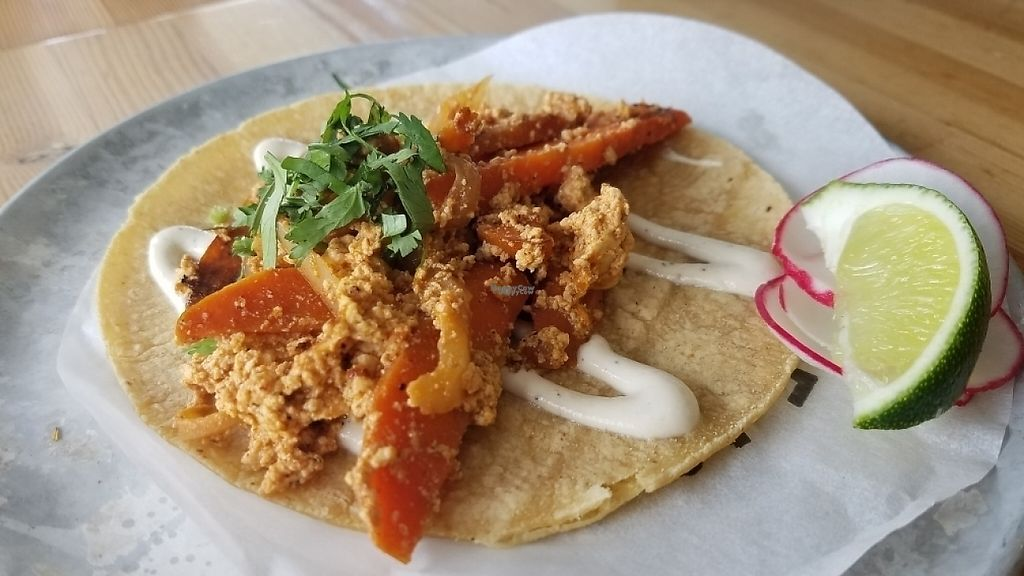 """Photo of Trejo's Tacos - Miracle Mile  by <a href=""""/members/profile/kenvegan"""">kenvegan</a> <br/>seared carrot and vegan chorizo taco <br/> April 17, 2017  - <a href='/contact/abuse/image/84468/249428'>Report</a>"""