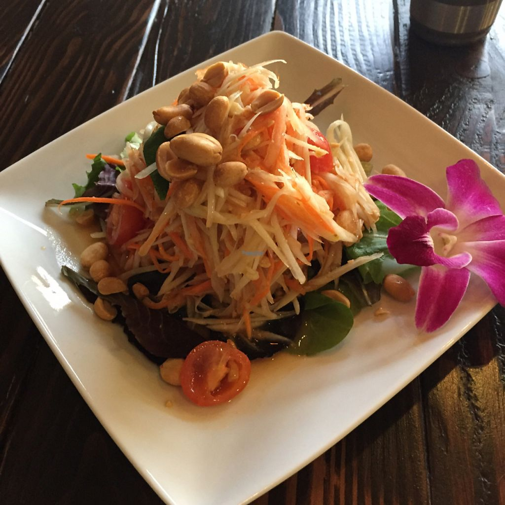 "Photo of KaTi  by <a href=""/members/profile/nlukas51"">nlukas51</a> <br/>Papaya salad <br/> March 16, 2017  - <a href='/contact/abuse/image/84541/237066'>Report</a>"