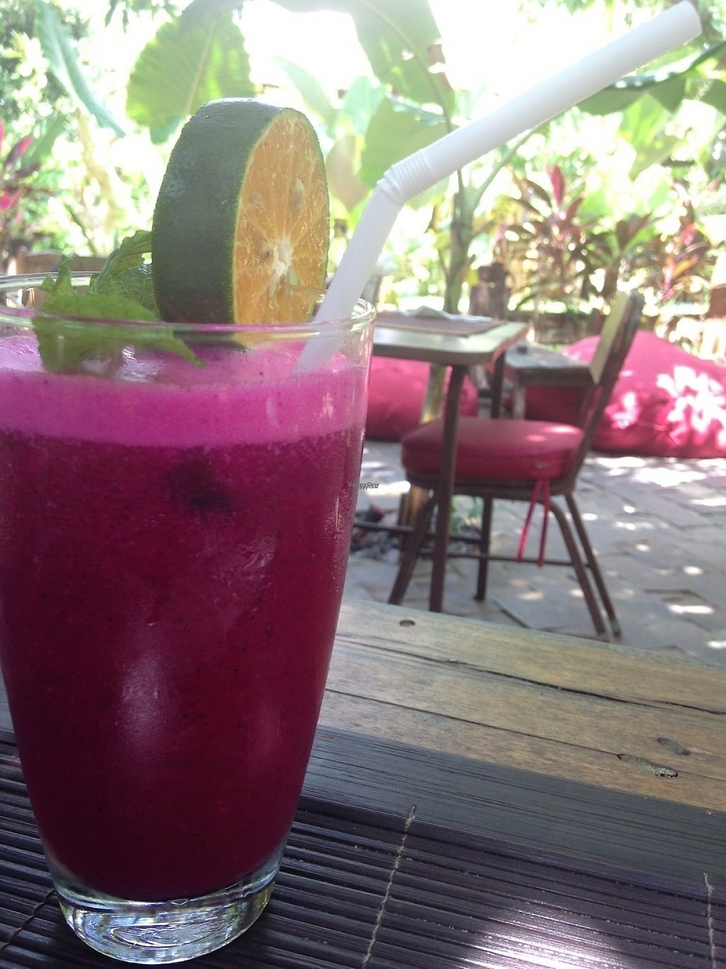 "Photo of The Alchemist Restaurant and Ecolodge  by <a href=""/members/profile/JuliasJourney"">JuliasJourney</a> <br/>Dragonfruit, Orange, Mint Juice <br/> December 30, 2016  - <a href='/contact/abuse/image/84579/206144'>Report</a>"