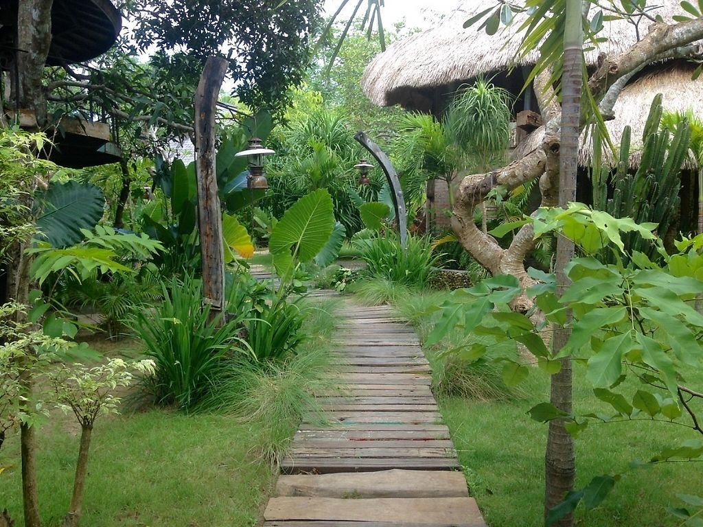 "Photo of The Alchemist Restaurant and Ecolodge  by <a href=""/members/profile/JuliasJourney"">JuliasJourney</a> <br/>Path to the Treehouses <br/> December 30, 2016  - <a href='/contact/abuse/image/84579/206150'>Report</a>"
