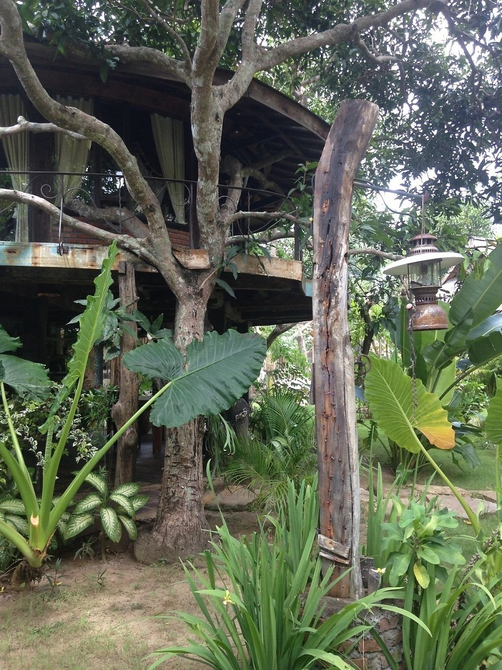 "Photo of The Alchemist Restaurant and Ecolodge  by <a href=""/members/profile/JuliasJourney"">JuliasJourney</a> <br/>Treehouses <br/> December 30, 2016  - <a href='/contact/abuse/image/84579/206154'>Report</a>"