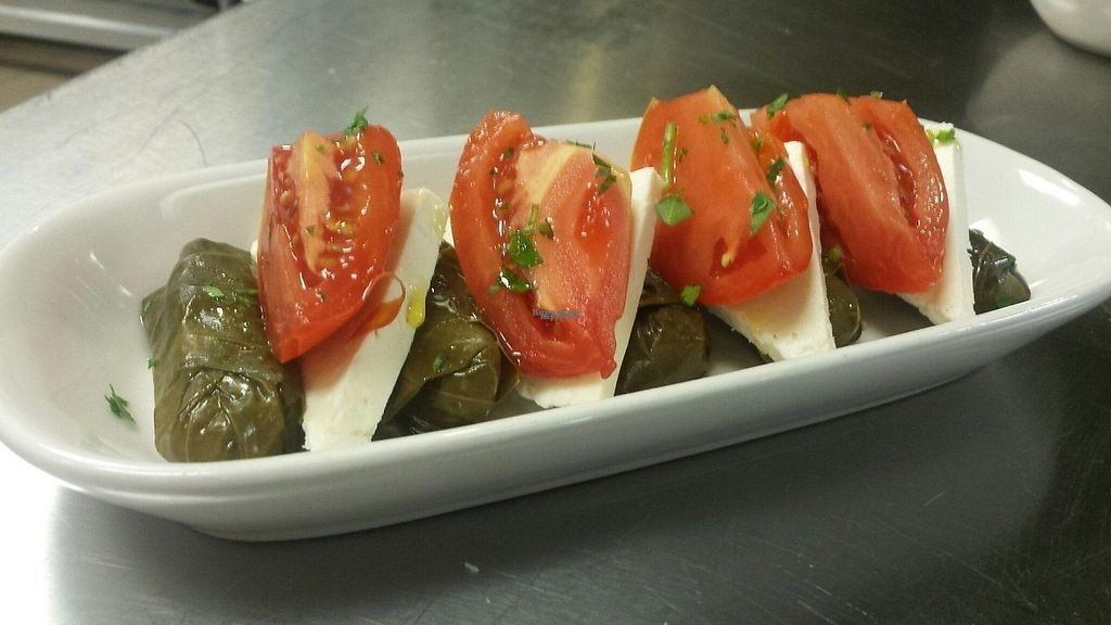 """Photo of Terra  by <a href=""""/members/profile/lovehealthy"""">lovehealthy</a> <br/>Best Stuffed Grape leaves ever!!!!! Stuffing is vegan and the Feta Cheese is optional <br/> January 3, 2017  - <a href='/contact/abuse/image/84622/207742'>Report</a>"""