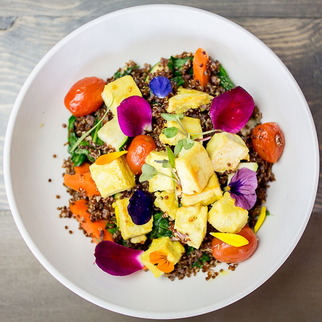 """Photo of Voltaire Beach House  by <a href=""""/members/profile/hgrosenheider"""">hgrosenheider</a> <br/>""""The Hippie"""" Bowl with marinated tofu, baby carrots, green beans, cherry tomato, steamed quinoa, steamed spinach, zucchini and cucumber-lime dressing <br/> January 17, 2017  - <a href='/contact/abuse/image/84659/212852'>Report</a>"""