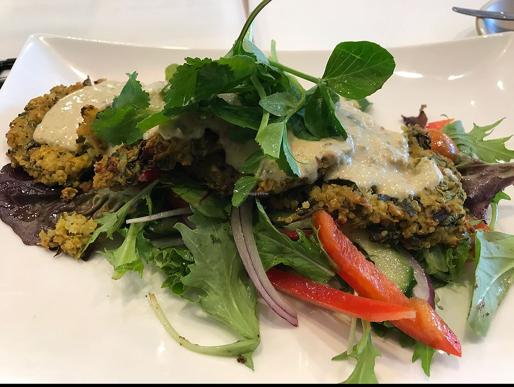 """Photo of Ballarat Wholefoods Cafe  by <a href=""""/members/profile/ScottTheVegan"""">ScottTheVegan</a> <br/>quinoa and chickpea patties on a bed of salad <br/> June 20, 2017  - <a href='/contact/abuse/image/84679/271237'>Report</a>"""