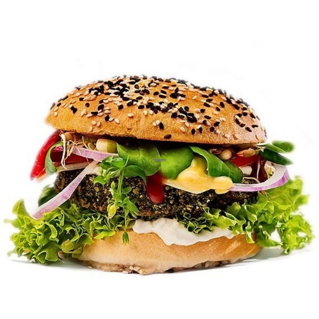 """Photo of Chutnej Fast Food  by <a href=""""/members/profile/Chutnej"""">Chutnej</a> <br/>Czeko-Brko   A burger made from Czech grown herbs with with sojanaise, lollo lettuce, bell pepper, cucumber, tomatoes, red onion, vegan cheese, ketchup, caramelised onions, and mixed sprouts .................................................................................................... The name is a pun on the 4 herbs used, the acronym of which makes """"brko"""", which in Czech is either a straw or a joint! The herbs are in Czech, ČEsnáček lékařský, KOpřiva dvoudomá, BRšlice kozí noha, KOstival lékařský, and in English garlic mustard, nettle, Bishop's weed (Aegopodium podagraria), and comfrey (Symphytum officinale)  <br/> January 2, 2017  - <a href='/contact/abuse/image/84697/207109'>Report</a>"""