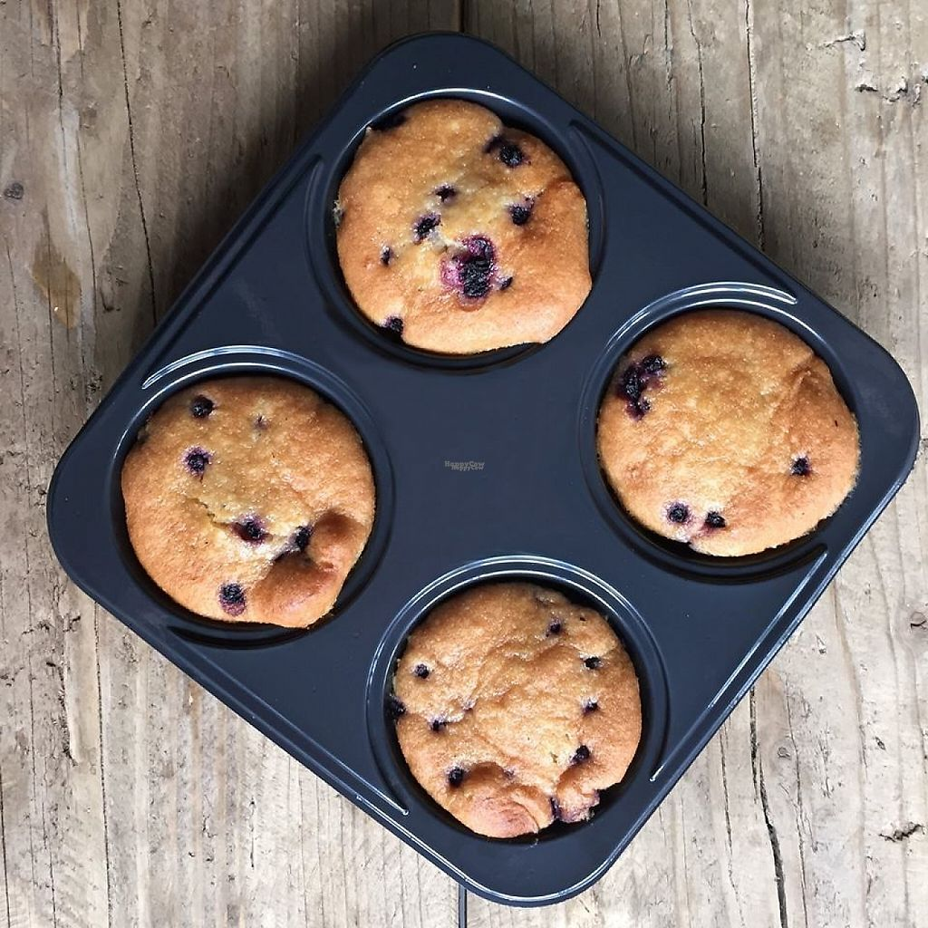 """Photo of Franz Family Bakery  by <a href=""""/members/profile/community"""">community</a> <br/>Gluten free blueberry muffins  <br/> January 11, 2017  - <a href='/contact/abuse/image/84723/210553'>Report</a>"""