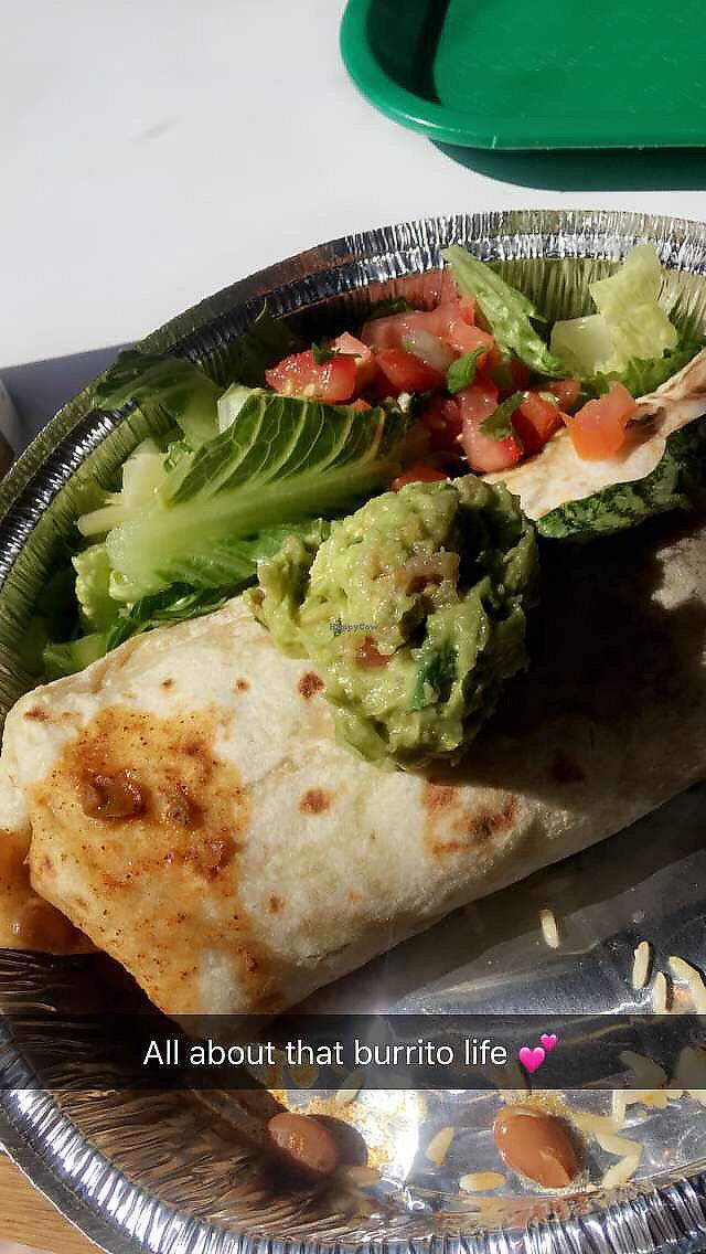 """Photo of Cafe Rio  by <a href=""""/members/profile/zozoxo"""">zozoxo</a> <br/>Vegan Burrito with guacamole, lettuce and pico de gallo.  <br/> July 16, 2017  - <a href='/contact/abuse/image/84726/280892'>Report</a>"""