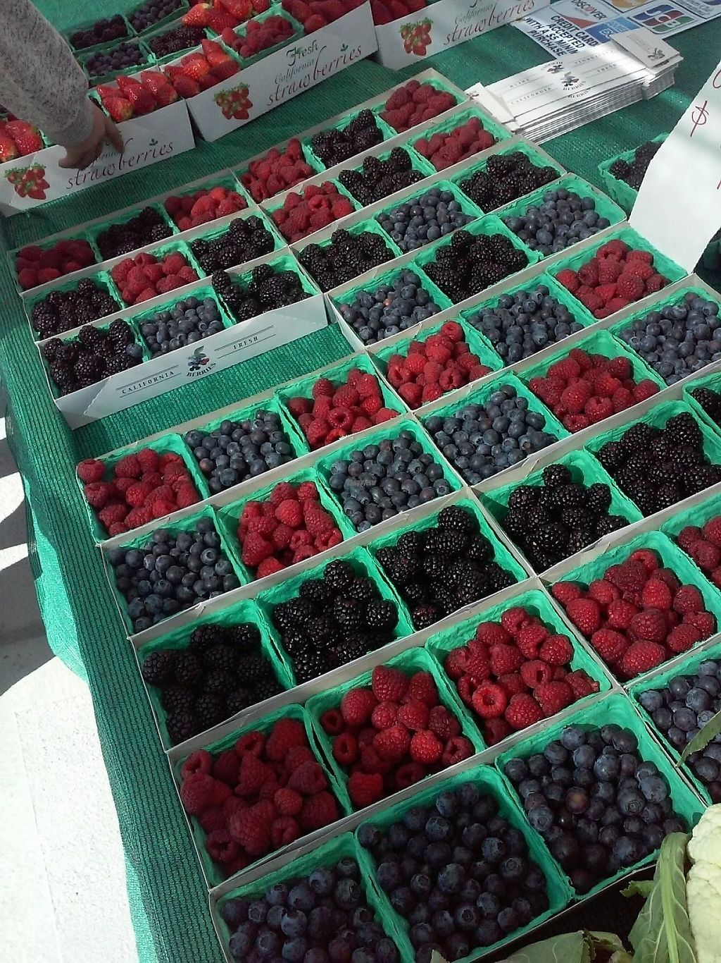 """Photo of Farmer's Market   by <a href=""""/members/profile/anastronomy"""">anastronomy</a> <br/>Fresh berries  <br/> December 30, 2016  - <a href='/contact/abuse/image/84750/206344'>Report</a>"""