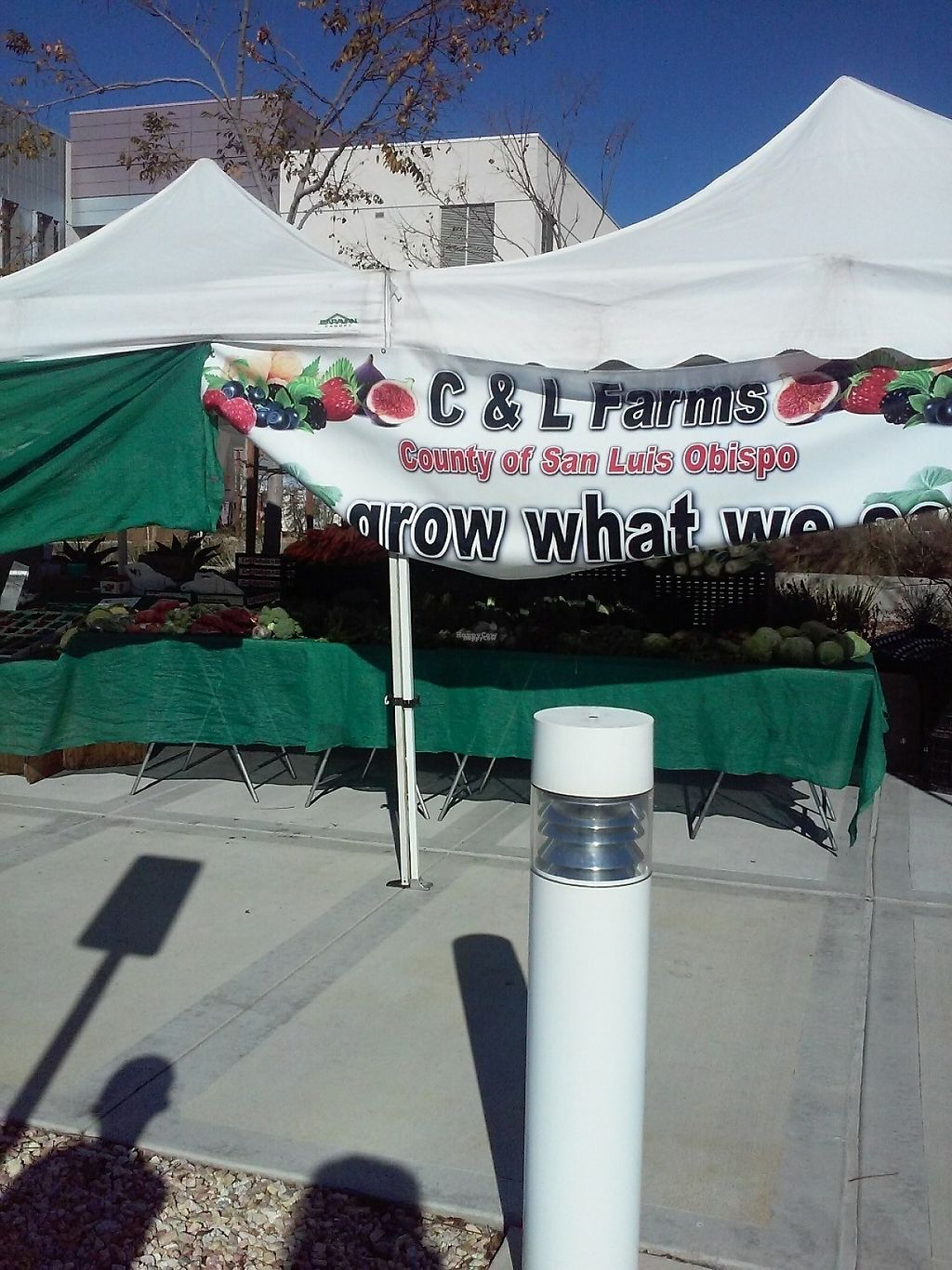"""Photo of Farmer's Market   by <a href=""""/members/profile/anastronomy"""">anastronomy</a> <br/>Vendor who sells produce grown in the county of San Luis Obispo  <br/> December 30, 2016  - <a href='/contact/abuse/image/84750/206352'>Report</a>"""