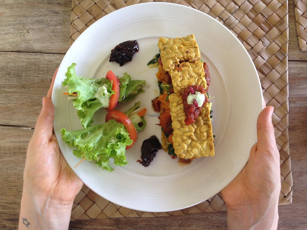 """Photo of Fussy Bird  by <a href=""""/members/profile/HappyVeganCouple"""">HappyVeganCouple</a> <br/>Tempeh Lasagne <br/> March 25, 2017  - <a href='/contact/abuse/image/84838/240797'>Report</a>"""