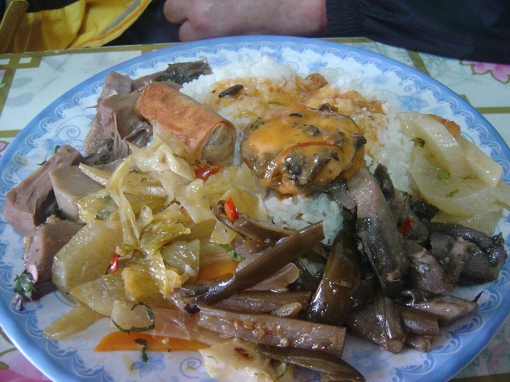 """Photo of Quan Chay 15  by <a href=""""/members/profile/mfalgas"""">mfalgas</a> <br/>Full plate, tasty and varied, 100% Vegan <br/> January 5, 2017  - <a href='/contact/abuse/image/84890/208309'>Report</a>"""