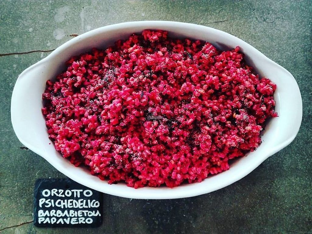 """Photo of Zero Organic Food  by <a href=""""/members/profile/community"""">community</a> <br/>Orzotto <br/> January 3, 2017  - <a href='/contact/abuse/image/84921/207380'>Report</a>"""