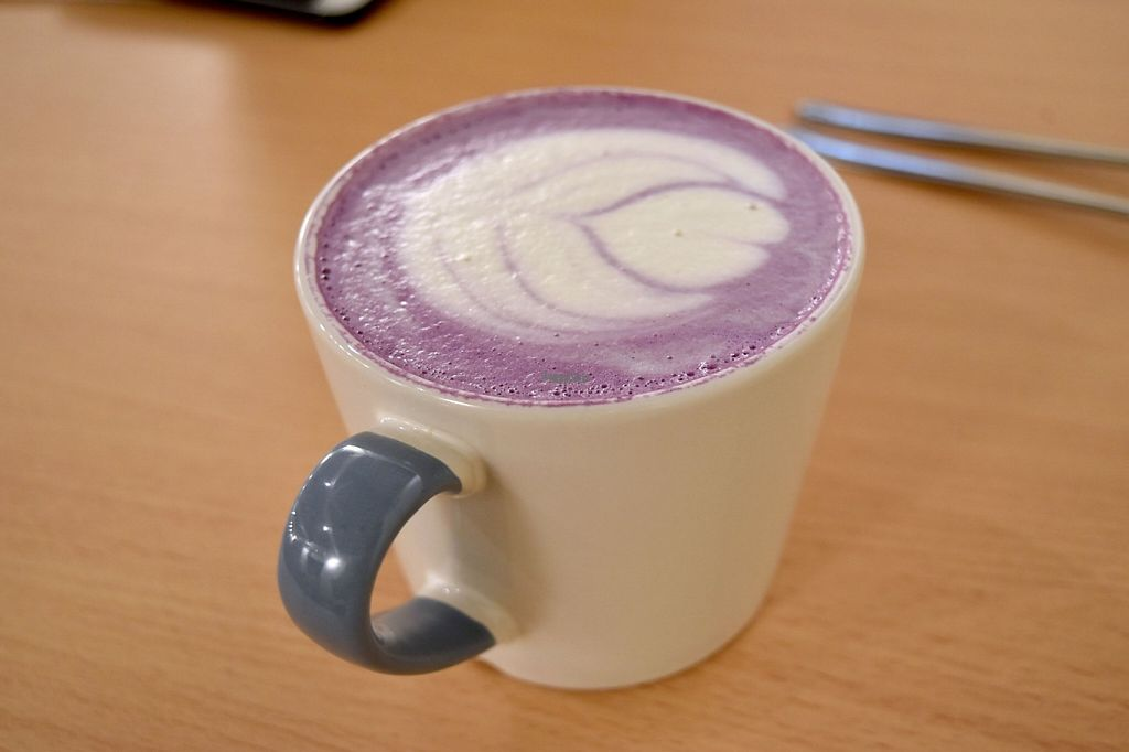 """Photo of Casphalt  by <a href=""""/members/profile/magicscarf"""">magicscarf</a> <br/>Purple potato soya latte <br/> February 8, 2017  - <a href='/contact/abuse/image/84948/224109'>Report</a>"""